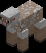 Лысая Овца без шерсти