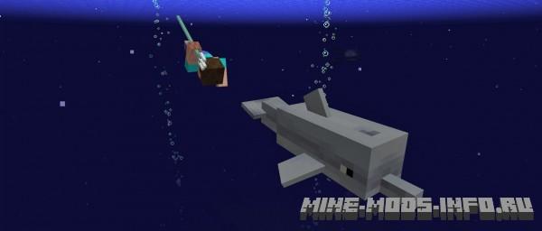 Моб - дельфин, Minecraft 1.13